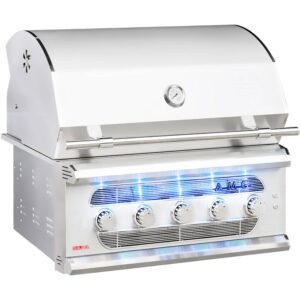 outdoor aspen grill